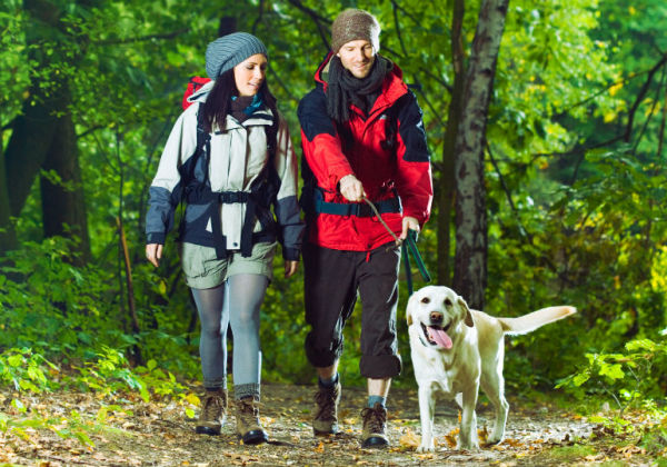Tips for Hitting the Hiking Trail with Your Dog